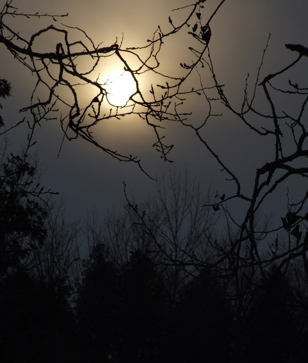 full-moon-1360348